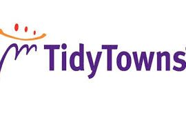 Tidy Towns Report 2018