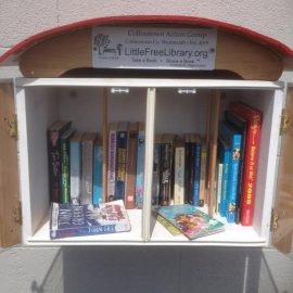 Little Free Library celebrates