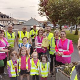 Lots of Litter Picking in Collinstown