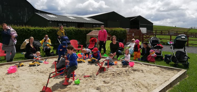 A Great Year for Collinstown Parent, Toddler and Baby Group