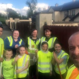 A hive of activity for Collinstown Tidy Towns