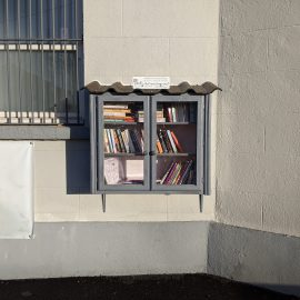 A New Free Little Library for Collinstown