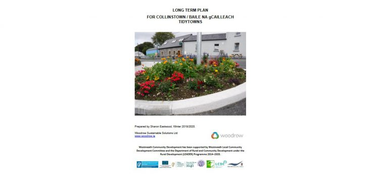 Collinstown Tidy Towns Plan 2020 – 2024