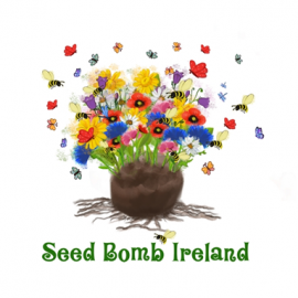 Mens Shed – Seed Bombs