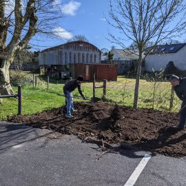 Busy morning for Tidy Towns