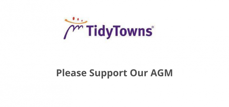 Tidy Towns AGM